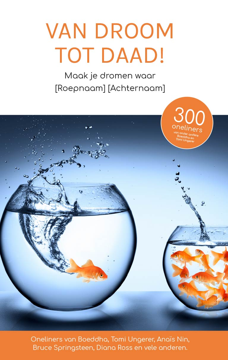 innovatie-verandermanagement-droom-tot-daad